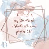 Two Year Bible reading Plan Social Media -88
